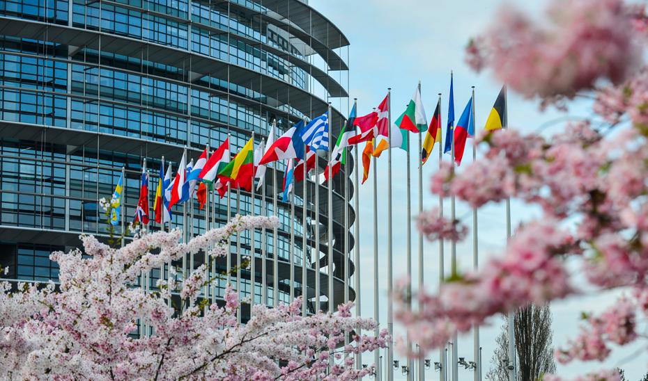 El Fondo Social Europeo es el principal instrumento de la UE para invertir directamente en el bienestar de las personas.