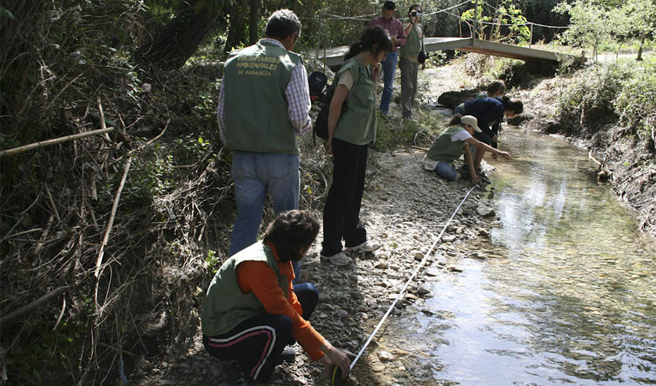 1.053 voluntarios ambientales de 183 asociaciones y entidades sociales de toda Andalucía han realizado este año un seguimiento a 180 tramos de 122 ríos y arroyos de la comunidad autónoma a través del programa \u0027Andarríos\u0027.
