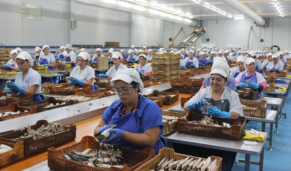 Trabajadoras de una planta de conservas de pescado.