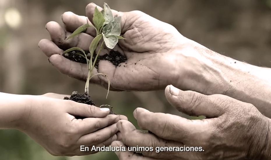 Campaña insittucional de la Junta de Andalucía con motivo del 28F (spot de televisión)