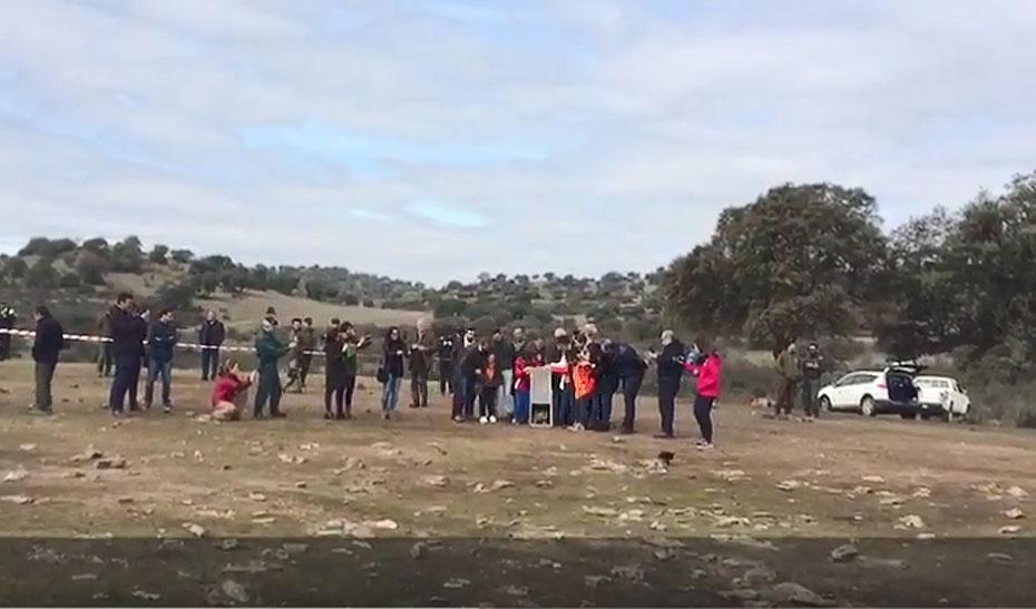 Suelta de dos linces ibéricos en la comarca de Guarrizas