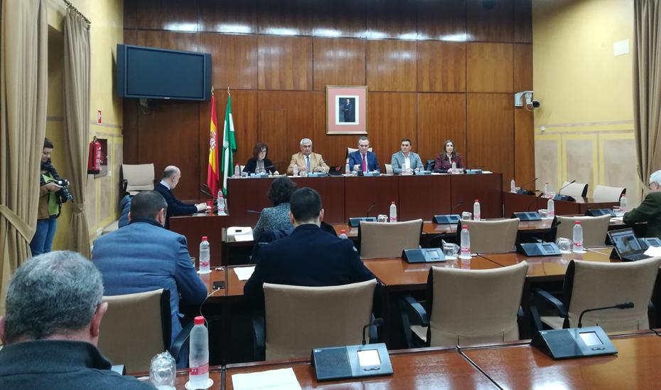 Arellano, en comisión parlamentaria