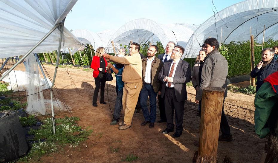El consejero de Agricultura, Pesca y Desarrollo Rural, Rodrigo Sánchez Haro, ha visitado en Almonte (Huelva) a agricultores afectados por el temporal que ha azotado a la provincia de Huelva.