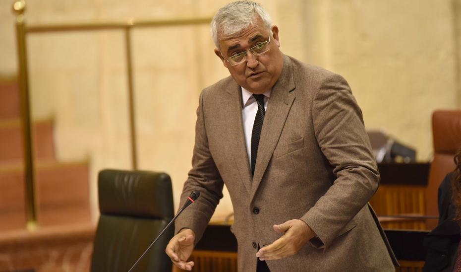 El consejero de Economía y Conocimiento, Antonio Ramírez de Arellano, durante su comparecencia en el Pleno del Parlamento andaluz.