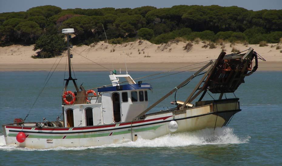La flota de pesquería de la chirla la componen en Andalucía 96 embarcaciones y 291 tripulantes.