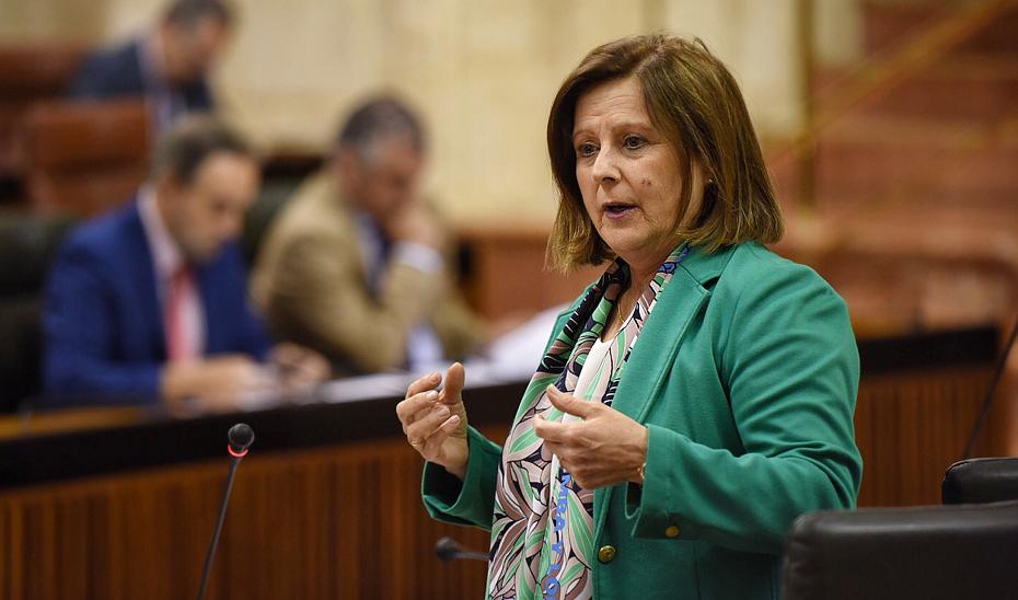 La consejera de Igualdad y Políticas Sociales, María José Sánchez Rubio, ha destacado en el Parlamento andaluz que es un nuevo servicio de atención psicológica y jurídica urgente que se activa ante las llamadas por agresiones sexuales.