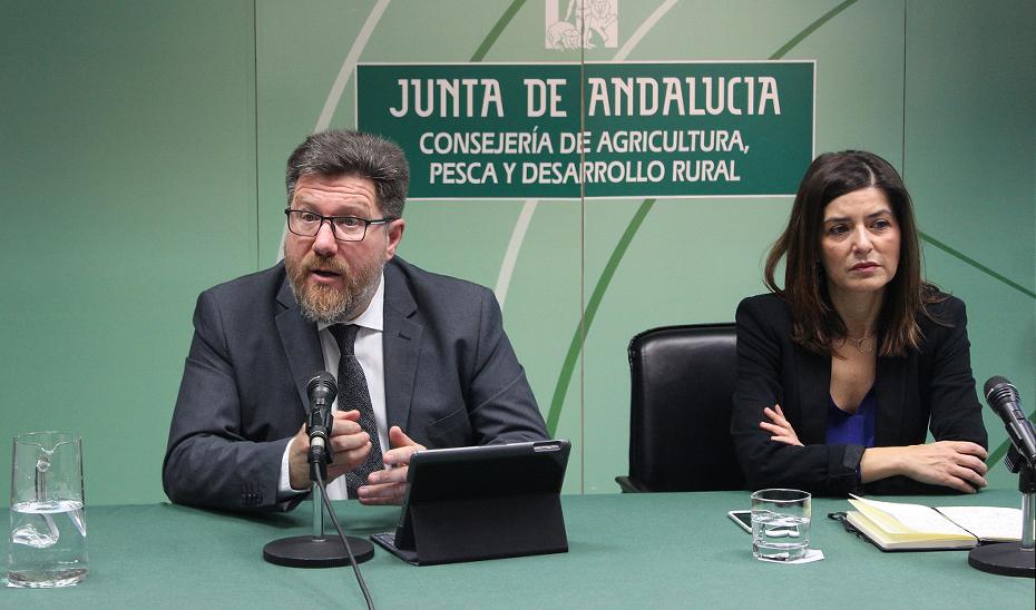 Rodrigo Sánchez Haro durante la comparecencia ante los medios junto a Concepción Cobo, secretaria general de Fondos Europeos Agrarios de la Junta.