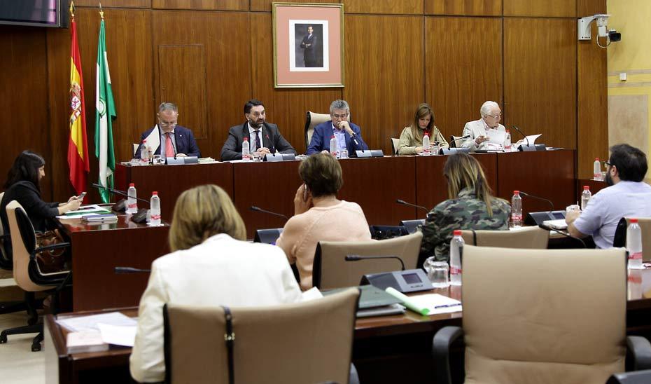 Francisco Javier Fernández durante su comparecencia ante la Comisión de Turismo del Parlamento andaluz.