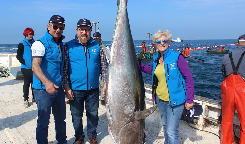 Reclaman un plan de gestión que permita aumentar las capturas de atún rojo