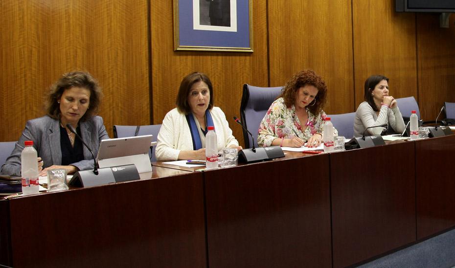 Comisión sobre Políticas para la Protección de la Infancia en Andalucía.
