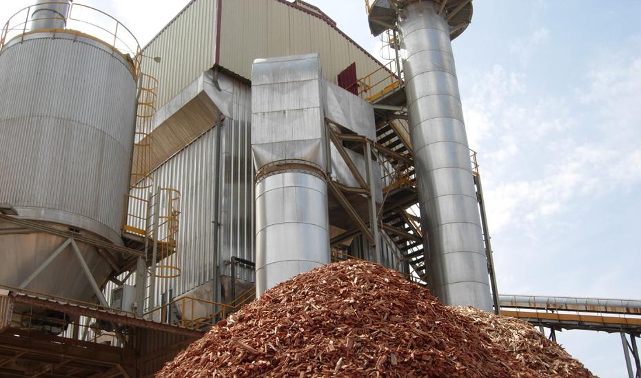 Andalucía cuenta con 18 plantas de generación eléctrica de biomasa, con una potencia de 257,8 megavatios.