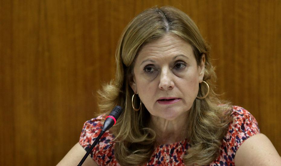 La consejera de Salud, Marina Álvarez, durante su intervención en Comisión Parlamentaria.