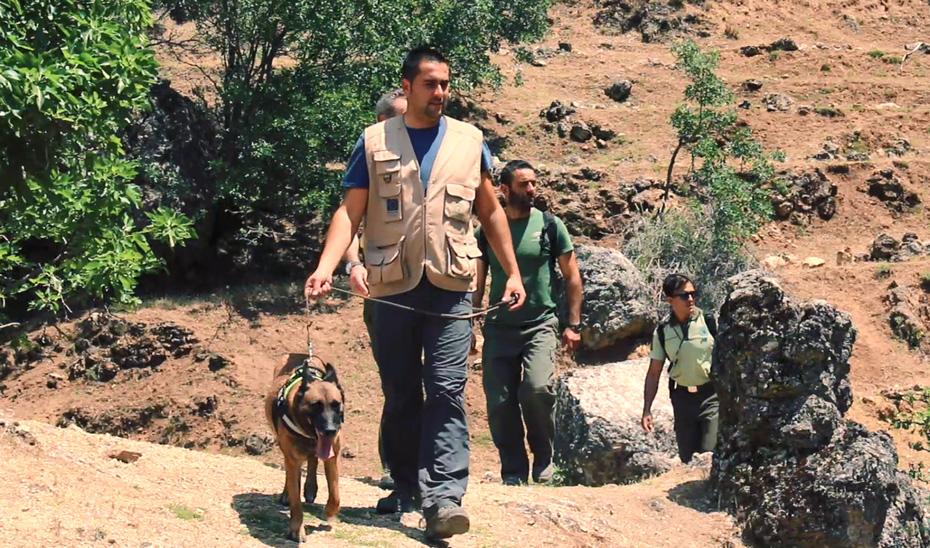 El equipo de la unidad canina se creó tras poner en marcha la consejería en 2004 la estrategia andaluza para la erradicación del veneno.
