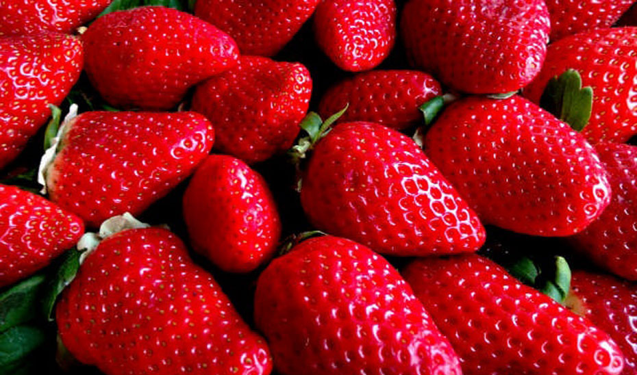 Imagen de unas fresas.