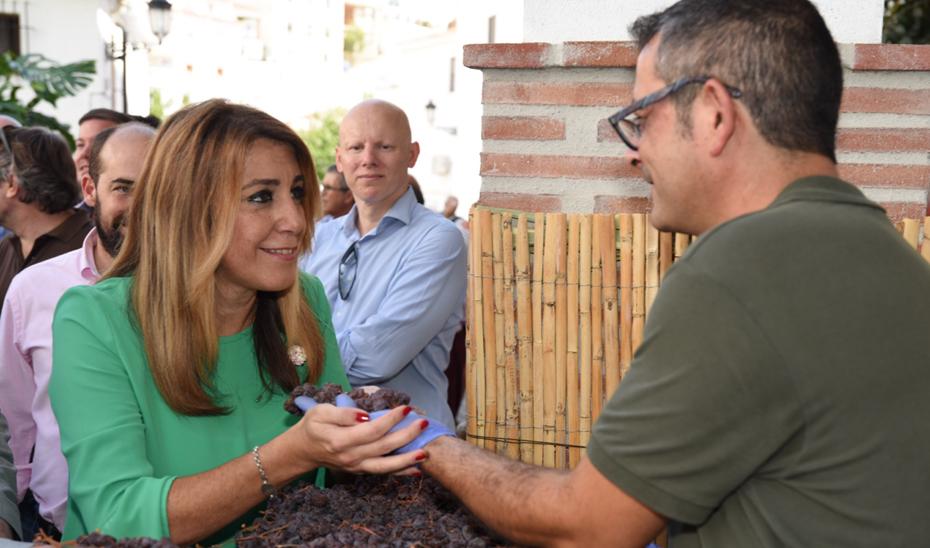 La presidenta de la Junta de Andalucía, Susana Díaz, ha asistido al tradicional Día de la pasa en El Borge, en la Axarquía malagueña.