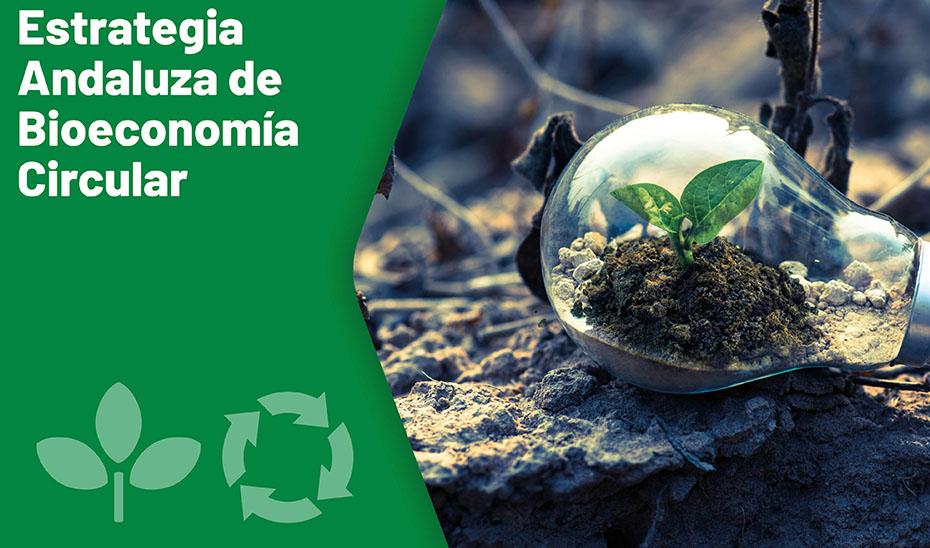 Estretegia Andaluza de Bioeconomía Circular