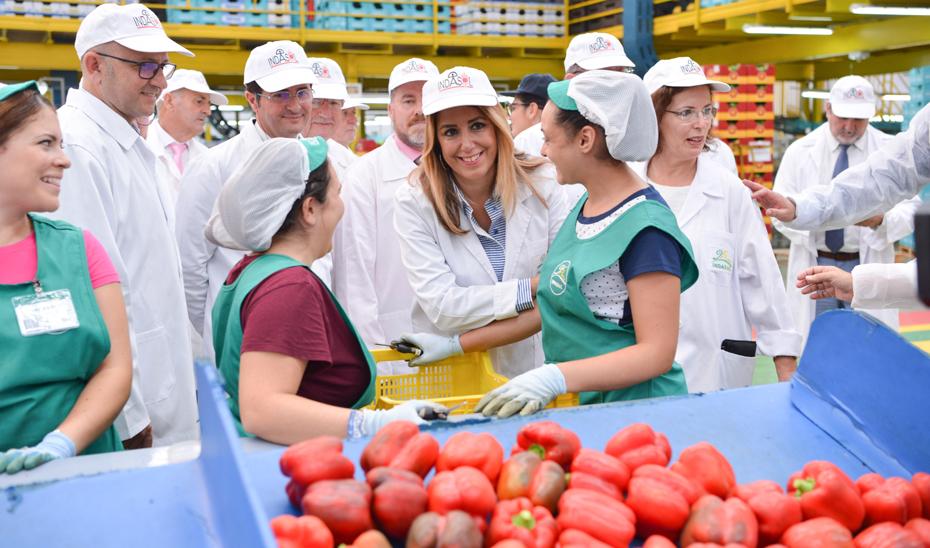 Susana Díaz anuncia la convocatoria el próximo viernes de 30 millones en ayudas a invernaderos