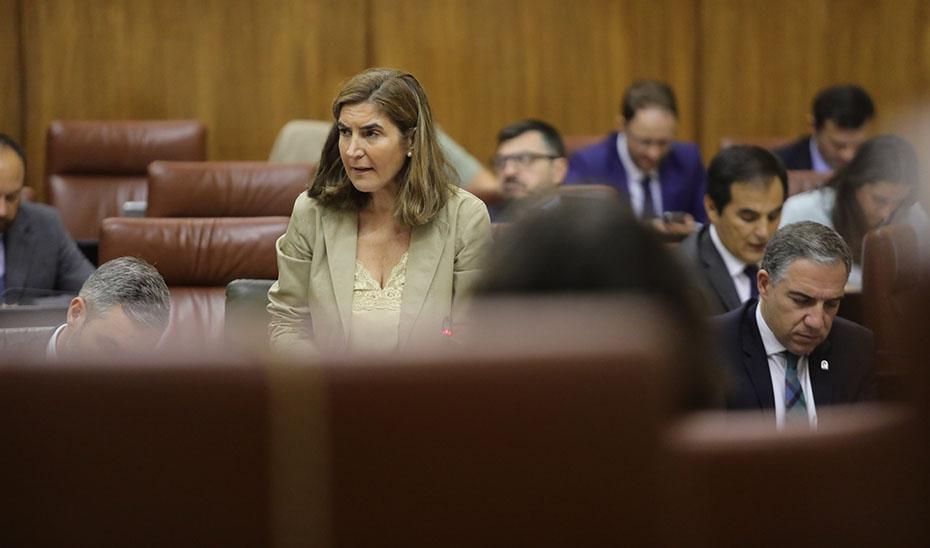 Rocío Blanco informó sobre la ejecución de las Iniciativas de Cooperación Local.