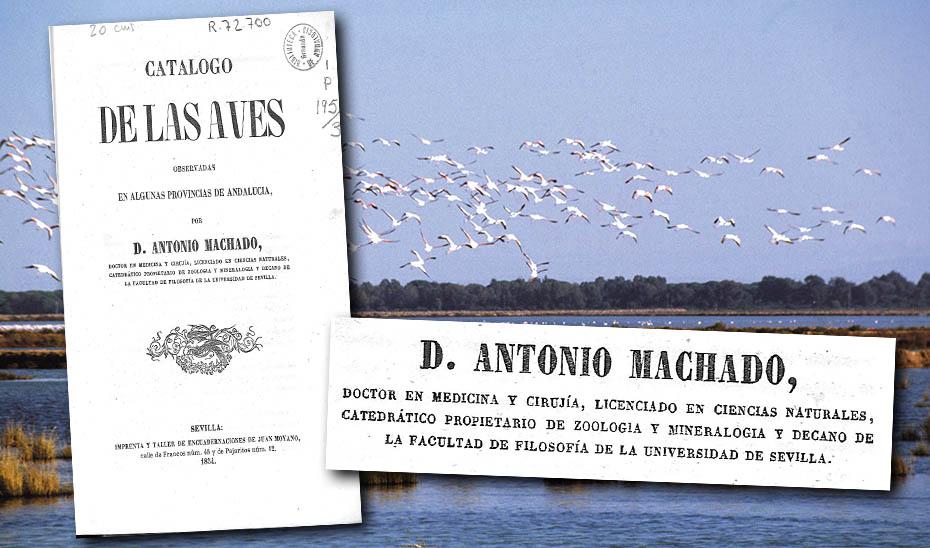 Portada del estudio realizado en 1854 por Antonio Machado y Núñez sobre las aves de Sevilla, Huelva y Cádiz.