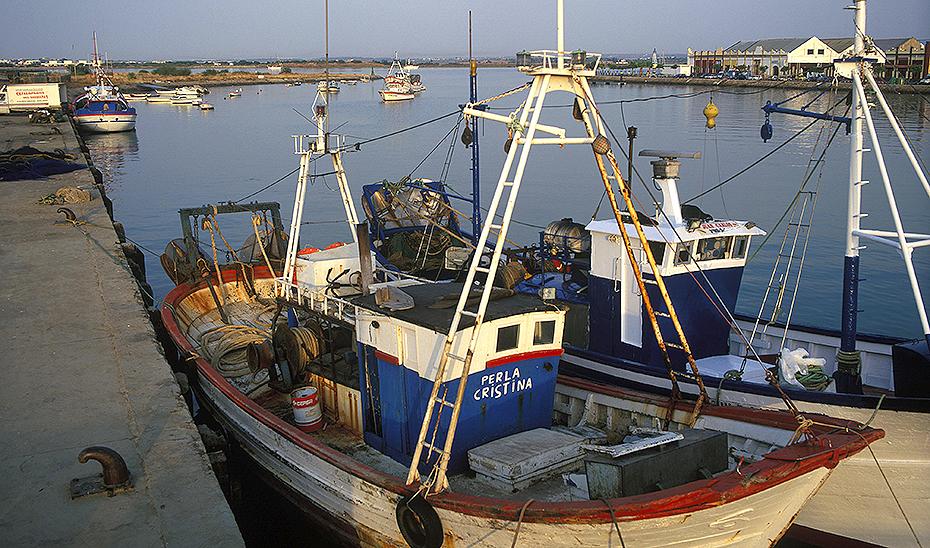 Embarcaciones atracadas en el puerto de Ayamonte donde se construirá una nueva lonja.
