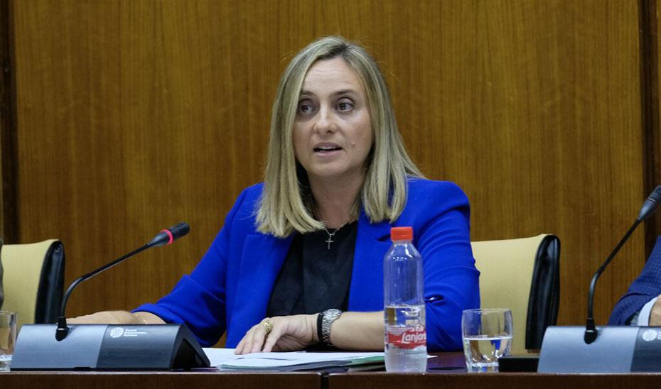 La consejera de Fomento, durante su intervención en comisión.