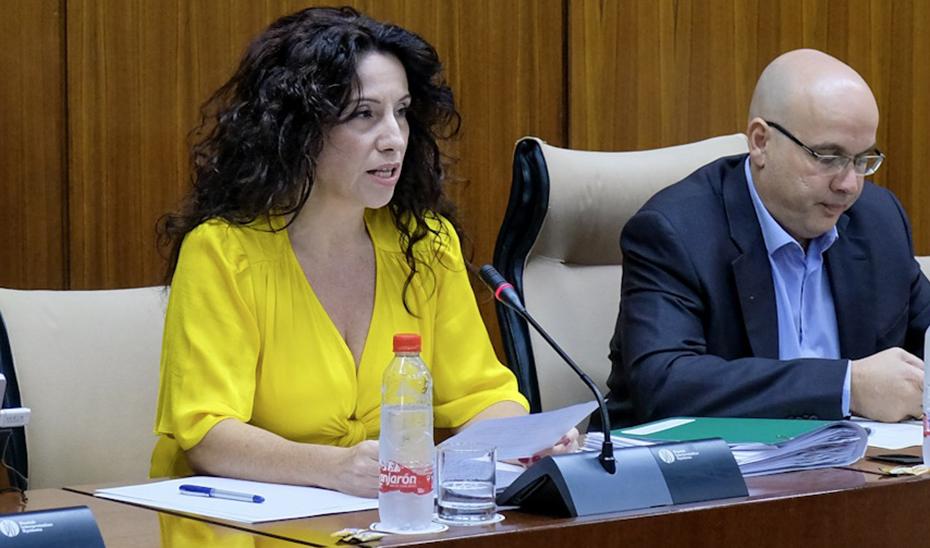 Rocío Ruiz, durante su comparecencia en la comisión parlamentaria de Igualdad, Políticas Sociales y Conciliación.
