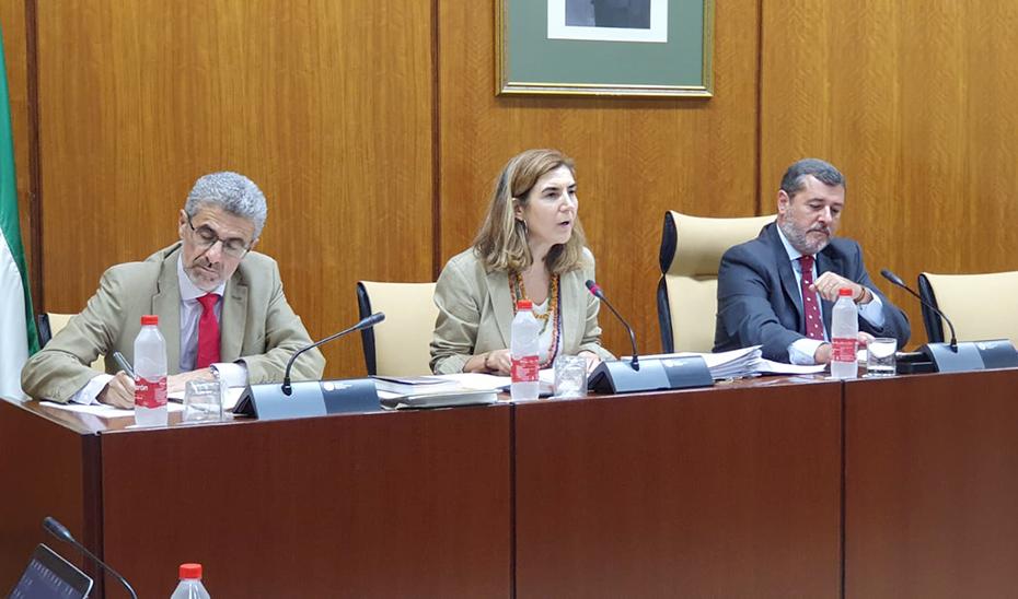 La consejera Rocío Blanco durante la comisión parlamentaria.