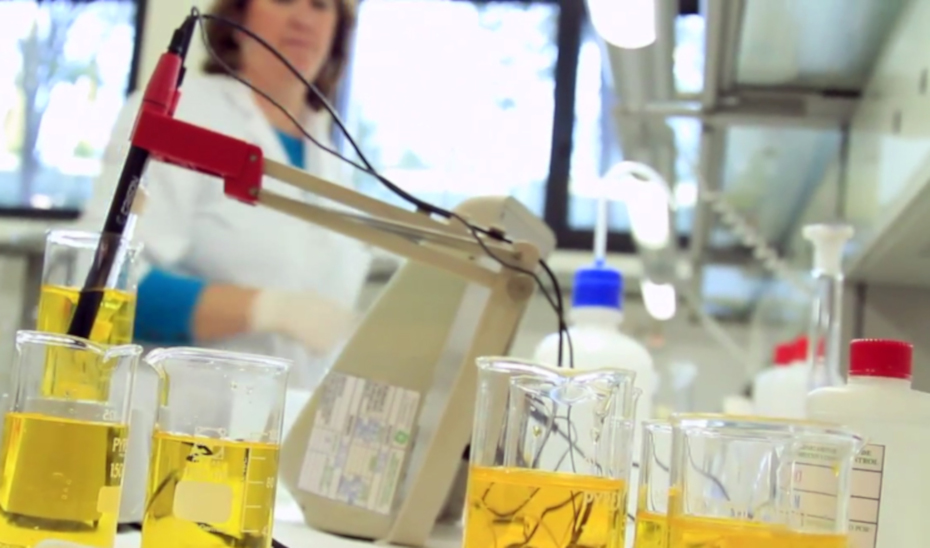 Laboratorio de investigación.