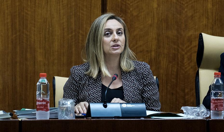 Marifrán Carazo en comisión informando de la nueva convocatoria para el fomento de las viviendas de alquiler. (Foto: Parlamento)