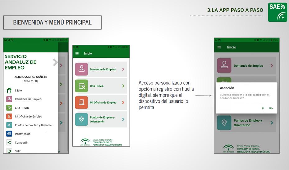 Aspecto de la nueva App del Servicio Andaluz de Empleo (SAE).