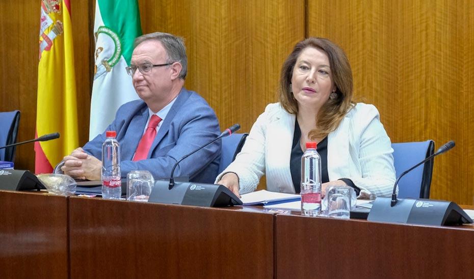 La consejera de Agricultura, Ganadería, Pesca y Desarrollo Sostenible, Carmen Crespo, en su primera comparecencia en comisión parlamentaria.