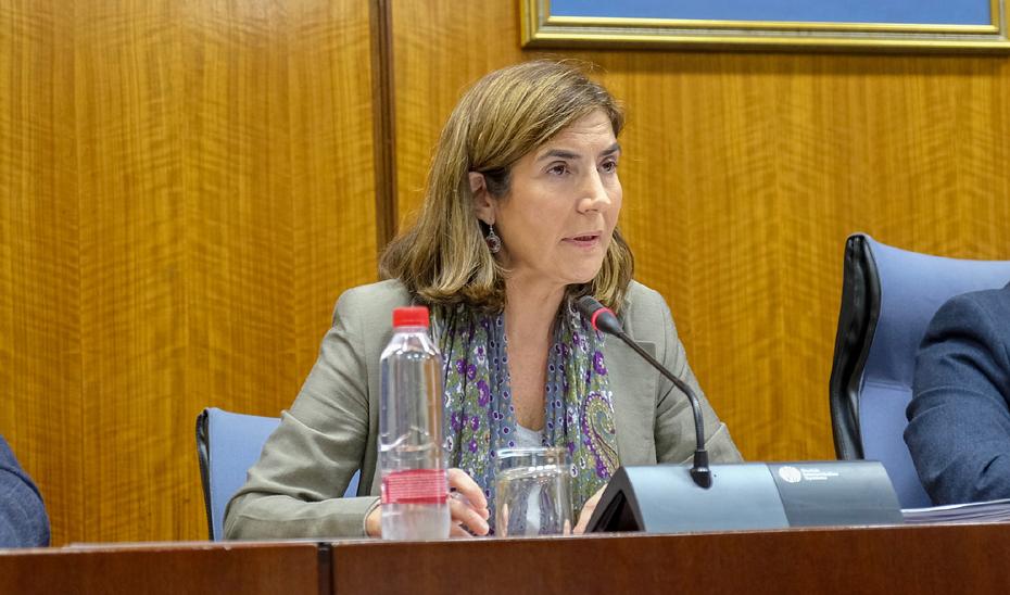 Rocío Blanco comparece en comisión en el Parlamento andaluz.