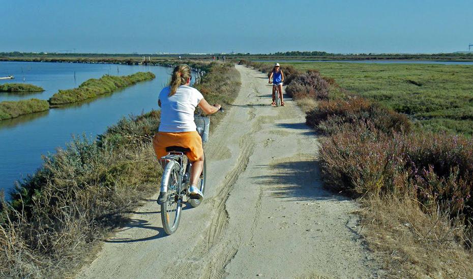 Carril bici por la vía verde del Parque de los Toruños.