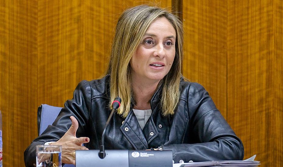 La consejera de Fomento, Infraestructuras y Ordenación del Territorio, Marifrán Carazo, durante la comisión parlamentaria.