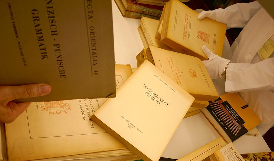 Algunos de los libros sobre la cultura fenicia que ha recibido el museo.