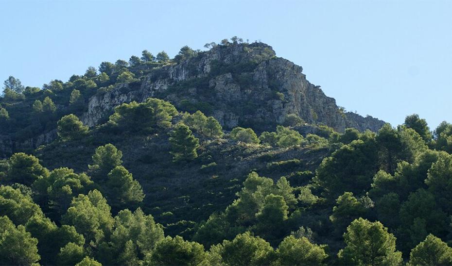 Monte Jabalcuza (Málaga)
