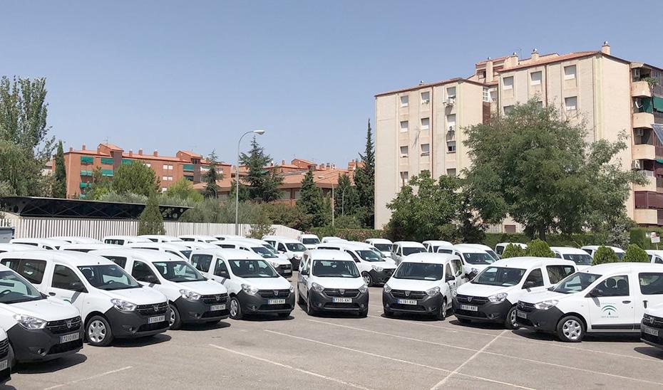 La flota de furgonetas dispuestas para ser entregadas a los municipios.