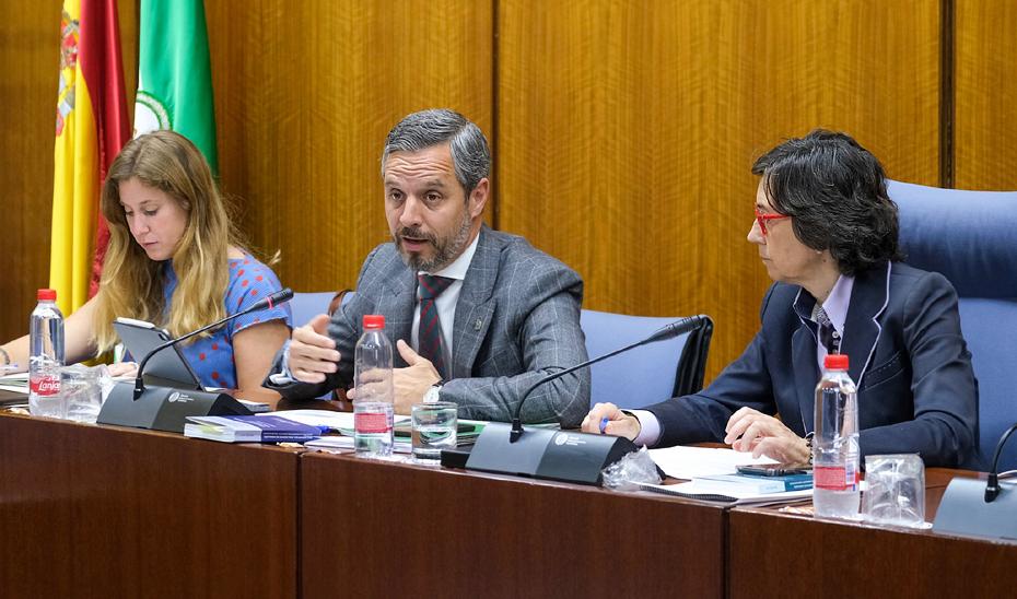 El consejero de Hacienda, Industria y Energía, Juan Bravo, este miércoles en la comisión parlamentaria.
