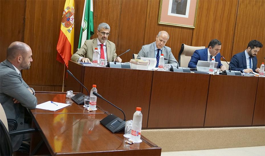 El consejero de Educación y Deporte, Javier Imbroda, durante la comisión.