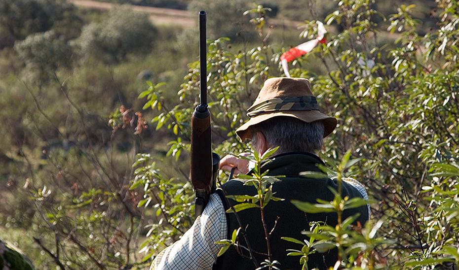 Un cazador en el campo pleno disfrute de su pasión cinegética.