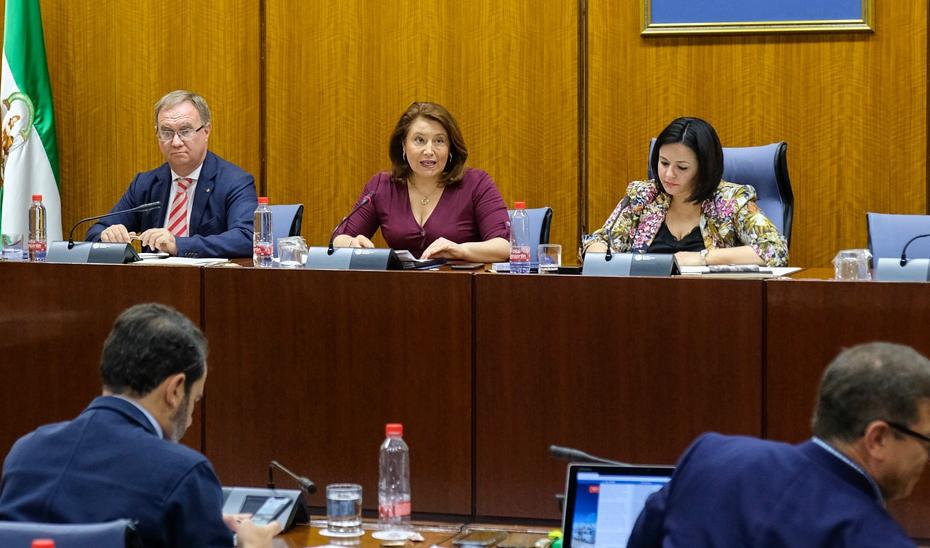 La consejera de Agricultura, Ganadería, Pesca y Desarrollo Sostenible, Carmen Crespo, en comisión parlamentaria.