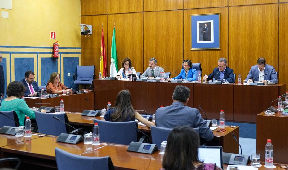 El consejero de Hacienda, Industria y Energía, Juan Bravo, interviene en la comisión parlamentaria.