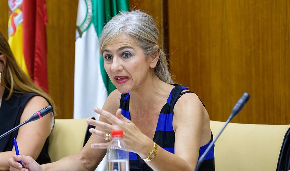 La consejera de Cultura, Patricia del Pozo, durante la Comisión de Cultura en el Parlamento