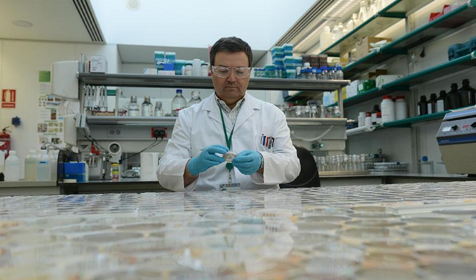 Un investigador, en su laboratorio.