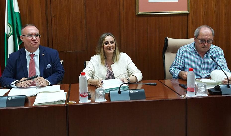 Carazo anunció la Ley de Ordenación del Transporte durante la comisión parlamentaria.