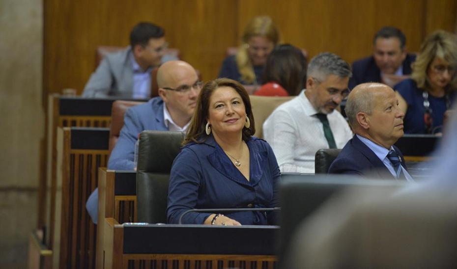 Carmen Crespo, en el Parlamento, durante la celebración de la sesión de control.
