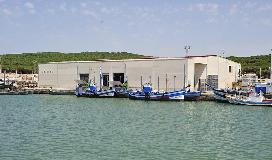 El puerto de Barbate, cuyo dragado acaba de licitar la Consejería de Fomento.
