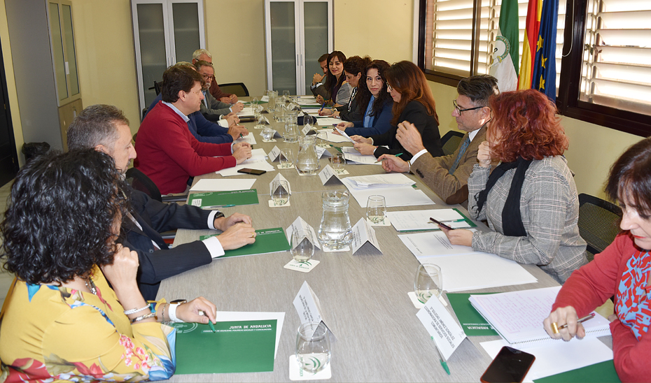 La consejera de Igualdad, Políticas Sociales y Conciliación, Rocío Ruiz, durante la reunión con los integrantes de la Mesa del Tercer Sector.