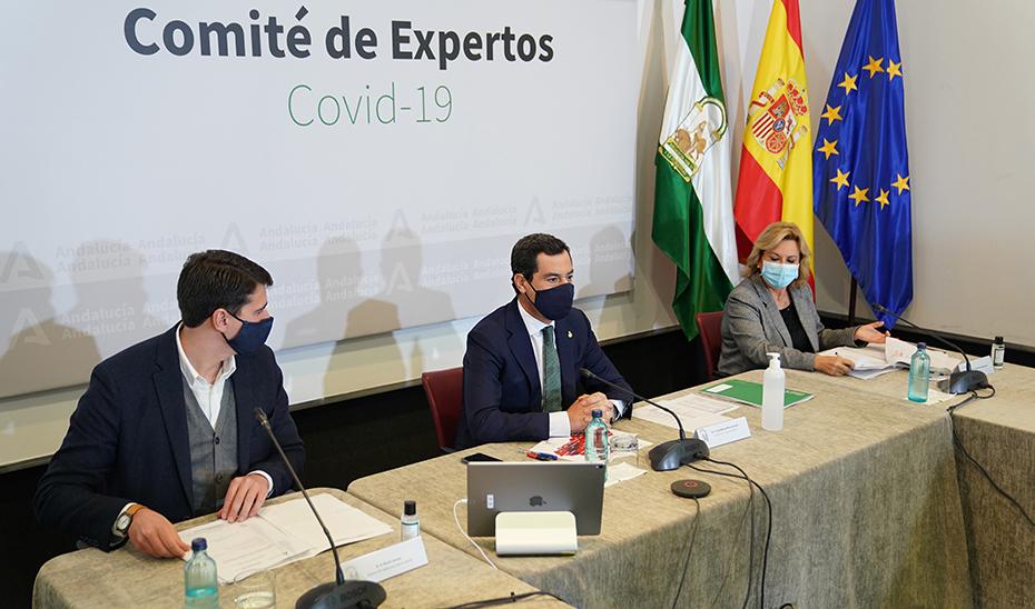 Moreno, durante la reunión del comité de expertos sobre el Covid-19, reunido este domingo en San Telmo.
