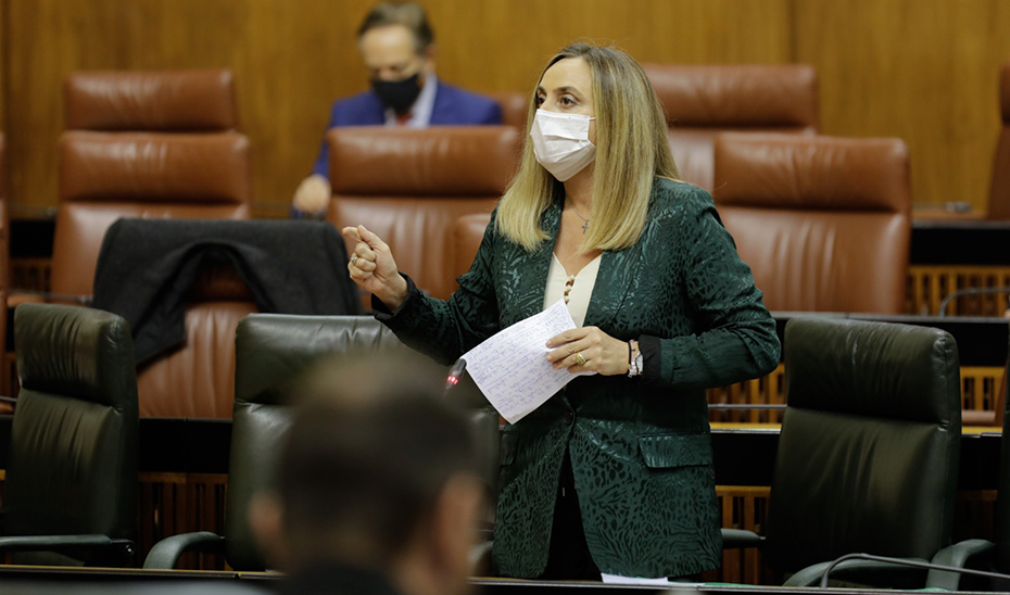 La consejera Marifrán Carazo responde desde su escaño a las preguntas de los grupos parlamentarios.